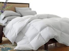 Full/Queen Comforters