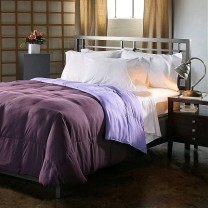Reversible Down Alternative Comforter - Plum/Lavender